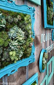 Outdoor Wall Planters by 34 Best Jardines Verticales Images On Pinterest Vertical Gardens