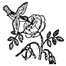 bowen mother goose hummingbird free clip art