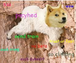 Rock Climbing Memes - climber doge doge know your meme