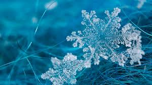 snowflake wallpaper group with 51 items
