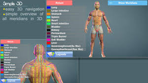 Anatomy Videos Free Download Easy Acupuncture 3d Lite Android Apps On Google Play