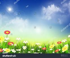 Image Of Spring Flowers by Nice Spring Flowers Pictures