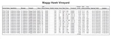 up close look at maggy hawk the pinotfile volume 10 issue 34