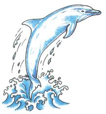 dolphin tattoo i drew something like this but mine was surfing
