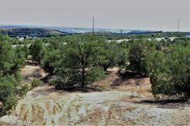 lexus granito listing price 2670 tract pinon frontage road farmington property listing mls