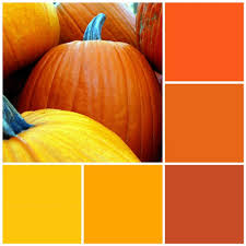 fall color pallette 12 fall color palettes for your kitchen