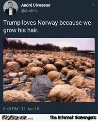 Norway Meme - why trump loves norway funny meme pmslweb
