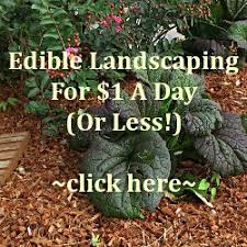 Edible Garden Ideas Edible Landscaping Organic Gardening And Landscape Design