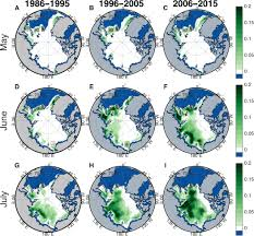 the frequency and extent of sub ice phytoplankton blooms in the