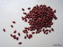 cuisiner des haricots rouges secs gâteaux en espagne caparrones les haricots rouges espagnols avec