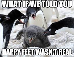 Cute Penguin Meme - 24 memes that prove penguins are the funniest animals on earth