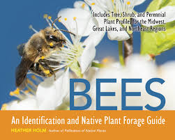 wholesale native plants bees an identification and native plant forage guide