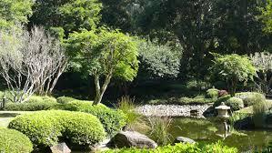 Brisbane Botanic Gardens Mount Coot Tha by Mt Coot Tha Botanical Gardens Frank U0026 Donnis Travel Blog