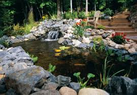 Pictures Of Backyard Ponds by 9 Relaxing Diy Outdoor Ponds Shelterness