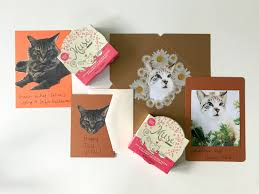 make these diy fall cards with your cats
