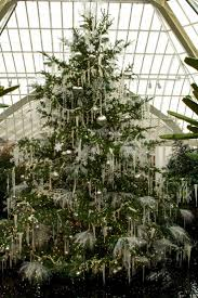 84 best have some decorum christmas trees images on pinterest