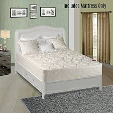 twin mattress firm amazon com