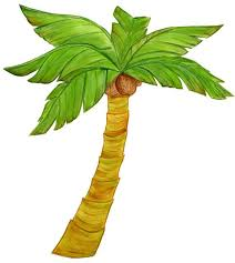 25 unique palm tree drawing ideas on pinterest palm tree sketch