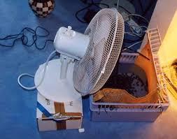 humidifier une chambre humidifier chambre sans humidificateur l air d une dair pour la à