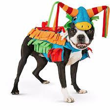 dog halloween costumes 2017 petco dog halloween costumes 2016 u2013 lifestyle guide