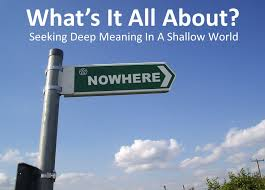 Seeking Meaning Seeking Meaning In A Shallow World What S It All About Ppt