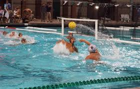 chs polo chs boys water polo competes in the america s finest city