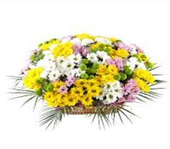 next day delivery flowers 35 best flowers delivery in dubai images on bouquets