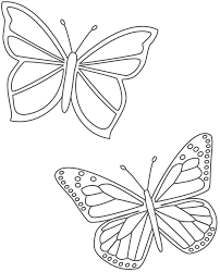 two butterflies coloring page insects