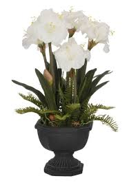 Silk Amaryllis Flowers - cheap red and white amaryllis find red and white amaryllis deals