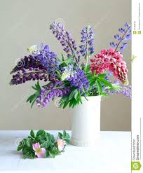 still life a white vase with purple and pink lupine and pink fl