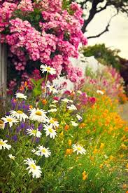 832 best garden heaven images on pinterest flowers gardens and