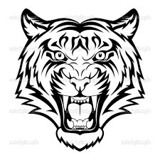 drawings of tigers faces easy tiger drawing how to draw the