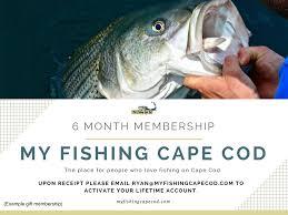 Cape Cod Kids Fishing - 5 my fishing cape cod