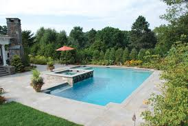 Swimming Pool Ideas For Backyard Top 8 Swimming Pool Shapes Luxury Pools