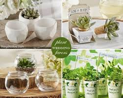 plant wedding favors 18 best eco friendly wedding favors images on wedding