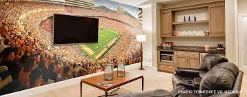 sports murals murals your way sports wallpaper mural