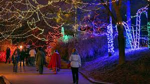 Lights At The Zoo by November 2014 Living In Indy