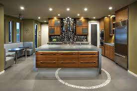 Zebra Wood Kitchen Cabinets Led Accent Lighting Beautiful Remodel