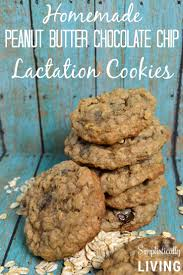 lactation cookies where to buy peanut butter chocolate chip lactation cookies