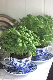 Small Herb Garden Ideas Top 15 Low Budget Ideas For Creating Small Herb Gardens Indoors