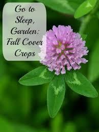 Fall Vegetable Garden Ideas by 29 Best Cover Crops Kids Images On Pinterest Veggie Gardens