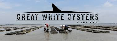 our brands u2013 cape cod oyster company