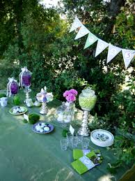Fairy Garden Party Ideas by An Enchanting Lilac U0026 Green Pixie Fairy Party Party Ideas