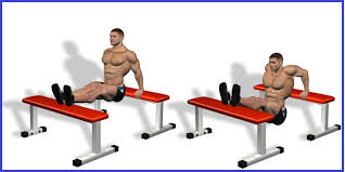 Triceps Bench Dips Top Triceps Exercises Chart Pictures Gym Workouts