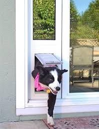 installing pet door in glass door best 25 dog door installation ideas on pinterest patio dog door