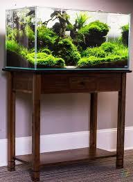 best fan for aquarium 26 best live plant aquariums images on pinterest fish aquariums
