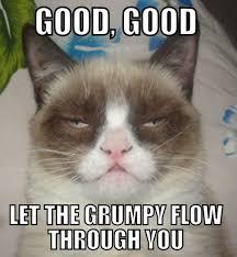 Good Grumpy Cat Meme - jimmyfungus com the best of grumpy cat the best grumpy cat memes