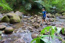 Hawaii the travelers images Maunawili falls hike oahu intentional travelers jpg
