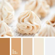 Color Beige The 25 Best Beige Color Palette Ideas On Pinterest Neutral