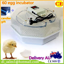 manual incubator promotion shop for promotional manual incubator